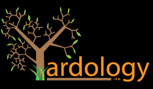 Yardology Landscaping Services - Commercial & Residential